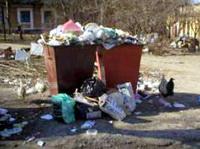 Сколько стоит мусор…