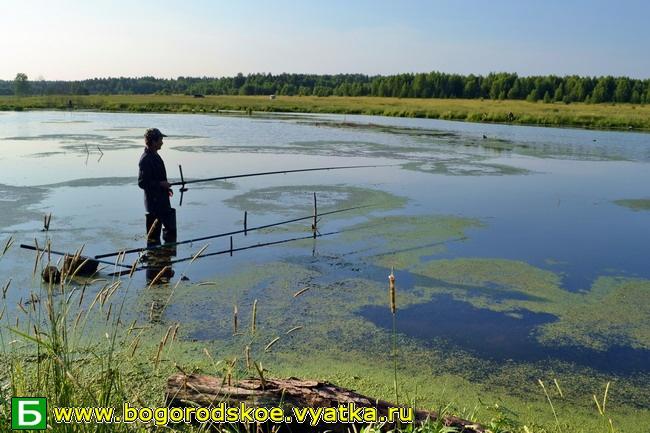 рыбалка в кировской области на каме