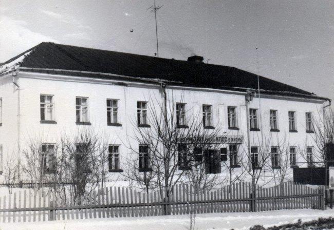 Строения Богородской ЦРБ