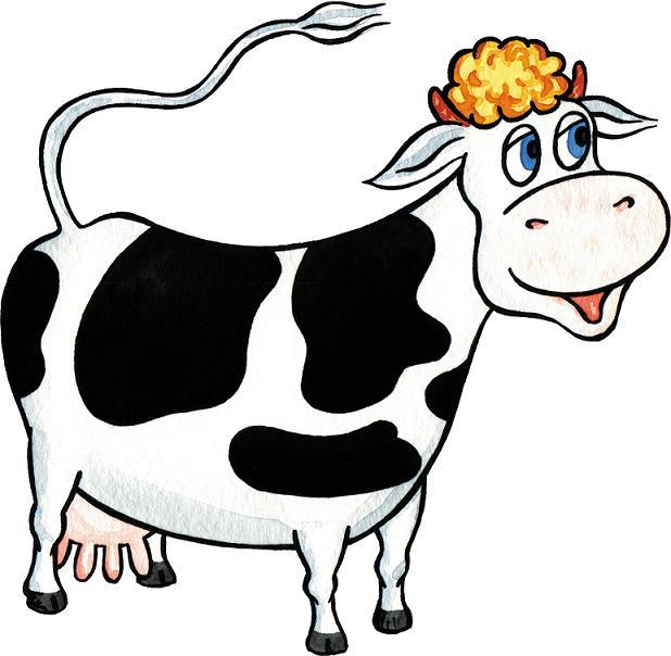 В бидоне 24 л молока