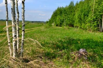 Богородский район выиграл гранд 670 тысяч рублей на экологическое образование и просвещение населения района в 2013 году»