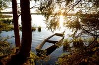 Тихо струится река серебристая в царстве вечернем зеленой весны.