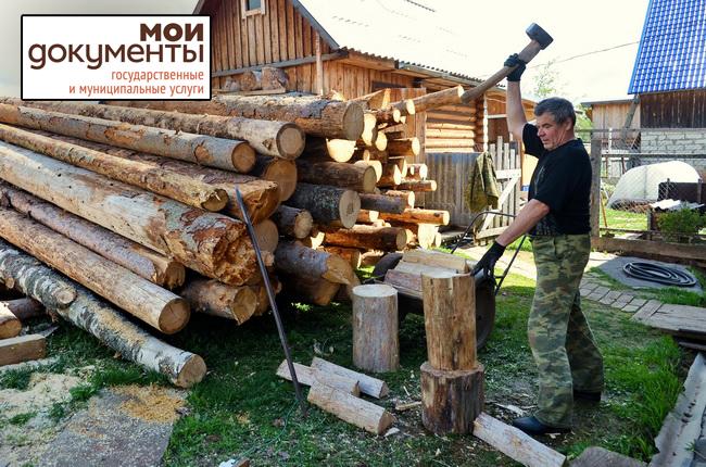 по картинки заготовки древесине